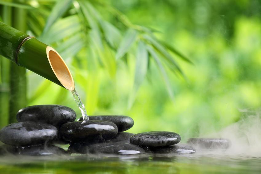 Ayurveda - Equilibre des énergies